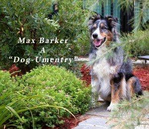 max Barker