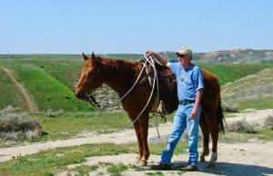 matt sheridan horsemanship