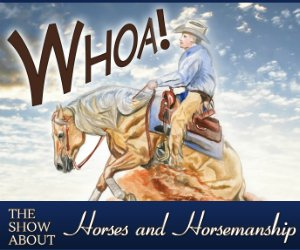 Advertise on the Whoa Podcast