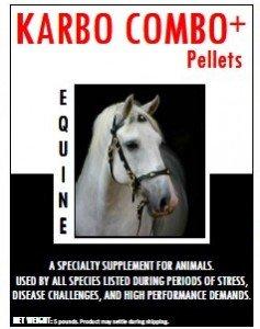 horses immune