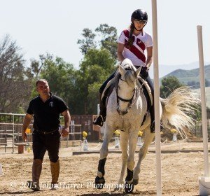Working Equitation training