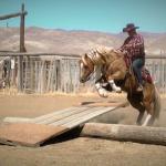 Bill Cameron Extreme Cowboy Race