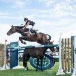 Vicki Wilson New Zealand Horsewoman