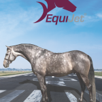 Equine transportation