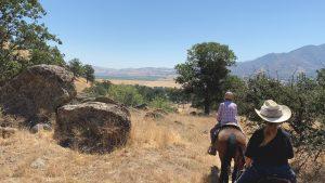 Stallion Springs