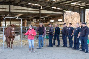 Equine Emergency Preparedness